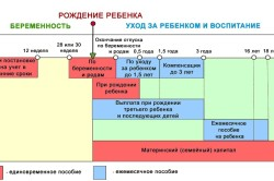 Схема декретных выплат