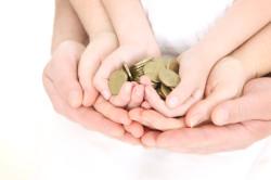 Частичное использование материнского капитала