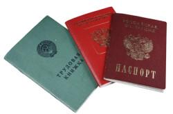 Документы на пособия для неработающих молодых семей: трудовая книжка, паспорт, военный билет