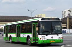 Льготы на общественный транспорт