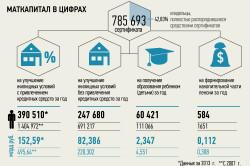Статистика использования материнского капитала